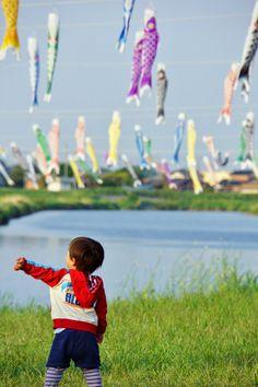Koinobori(Flying carp banners) for Children's Day,Japan