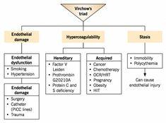 Etiology of venous thromboembolism – Virchow's triad Best Nursing Schools, Nursing School Notes, Nursing Exam, Nursing Tips, Medical Coding, Medical Science, Pharmacy School, Pa School, School Stuff
