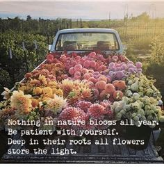 Missing this summer bloom so much but making do with stunning feed. Head on over for a hefty dose of floral magic Flower Aesthetic, Boho Aesthetic, Spring Aesthetic, Aesthetic Dark, Belle Photo, Pretty Pictures, Planting Flowers, Flowering Plants, Beautiful Flowers