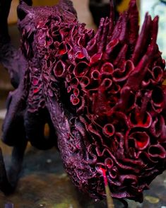 What colour would you paint an octopus? Ellen Jewett, Clay Figurine, Sculpting, Sunrise, Octopus, Colour, Paint, Instagram, Whittling