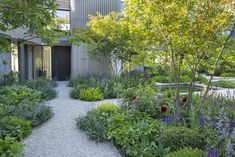 New Build Garden Ideas, Garden Ideas Uk, Garden Inspiration, Yard Ideas, Modern Planting, White Gravel, Back Garden Design, Gravel Garden, London Today
