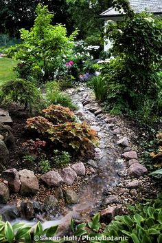 Stream running through backyard garden toward home - DIY Garten Landschaftsbau Backyard Stream, Garden Stream, Backyard Water Feature, Ponds Backyard, Easy Garden, Lawn And Garden, Water Garden, Garden Sheds, Pond Design