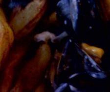 Recette Moules à la marinière par Cyssou - recette de la catégorie Plat principal - divers Beef, Recipes, Thumbnail Image, Food, Table, Beautiful, Cooking Recipes, Dish, Pisces