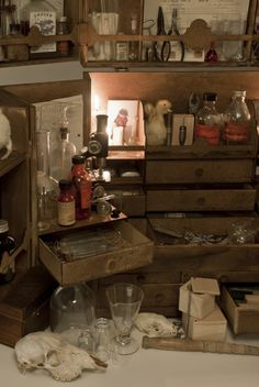 Cabinet of curiousities. Bottles and magic stuff / Sacred Spaces Curiosity Cabinet, Antique Writing Desk, Cabinet Of Curiosities, Office Art, Lost & Found, Shadow Box, Oeuvre D'art, Decoration, Larp
