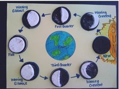 MFA Science (Grammar Stage) ~ Lesson Oreo cookies to learn the moon phases. Elementary Science, Science Classroom, Science Fair, Science Lessons, Teaching Science, Science Education, Science For Kids, Social Science, Science Activities