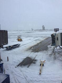 American Airlines Dallas Minneapolis  #AmericanAir #AmericanAirlines #DFW #MSP #Review #Travel #TravelBlogger #upintheair