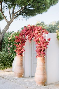 Colorfully Chic Athens Wedding Inspired by The Grand Budapest Hotel ⋆ Ruffled Bougainvillea Wedding, Bougainvillea Colors, Patio, Backyard, Chic Wedding, Wedding Aisles, Wedding Backdrops, Wedding Ceremonies, Ceremony Backdrop