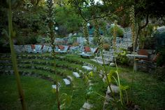 """I want!!!!  The """"Folly Bowl"""" amazing succulent backyard amphitheater.  Photo from A growing obsession blog."""