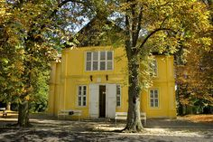 House of the József Rippl-Ronai, Kaposvar Hungary, Mansions, House Styles, Pictures, Home Decor, Bing Images, Villa, Painting, Travel