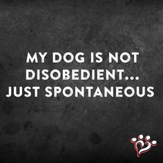 Not disobedient... Spontaneous