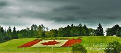 Upload your best weather photos or watch them in our searchable gallery. O Canada, Canada Travel, Great Places, Places To See, Belleville Ontario, All About Canada, I Am Canadian, Weather Network, Prince Edward