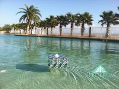 Give the gift that keeps on giving...a memorable holiday stay at Turquoise Place.