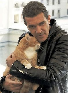 ANTONIO BANDERAS~~~ oh, this cat just made him that much cuter!