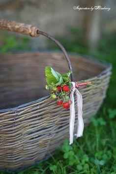 Blueberry: Strawberry Summer