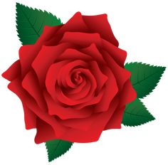 image of clip art red rose 7092 red roses clip art images free rh pinterest com red roses clipart borders red rose clipart png
