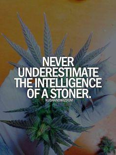 http://legalizethecannabis.tumblr.com/