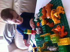 Wir bauen einen Zoo! :))