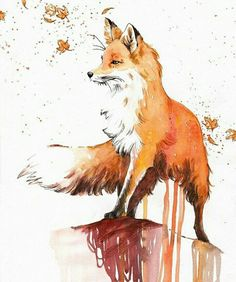 zeichnen aquarell fuchs malen drawing watercolor paint fox Related posts: Fox Say What? Fuchs Illustration, Art And Illustration, Watercolor Illustration, Painting & Drawing, Watercolor Paintings, Fox Painting, Fox Drawing, Watercolor Fox Tattoos, Fox Cartoon Drawing