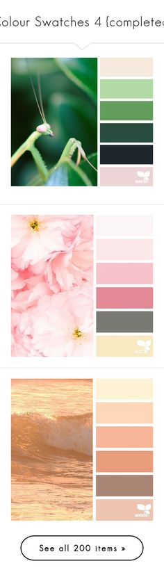 """""""Colour Swatches 4 {completed}"""" by pinkbubblerose ❤ liked on Polyvore featuring design seeds, pictures, colors, backgrounds, palettes, colour, seeds, color inspiration, color and color pallet"""