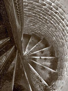Fan art inspired by House of Leaves by Mark Z. Danielewski