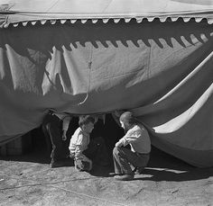 Inch Print - High quality prints (other products available) - NEW MEXICO: CIRCUS, <br> Boys sneaking under a circus tent in Roswell, New Mexico. Photograph by Arthur Rothstein. - Image supplied by Granger Art on Demand - Photograph printed in the USA New Mexico, Vintage Photographs, Vintage Photos, Fine Art Prints, Canvas Prints, Vintage Circus, Vintage Man, Big Top, High Resolution Photos