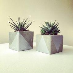 Silver concrete pots by Botanica Home