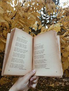 Kitap Çekimleri