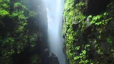 【日本百景】王余魚の滝(轟の滝)(徳島県) (瀑布, Waterfall, 폭포, Cascade, Cascada, شلال,водопад...