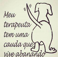 O MEU TAMBÉM! ❤️❤️❤️ #petmeupet #cachorro #gato #amoanimais #amocachorro #amogato