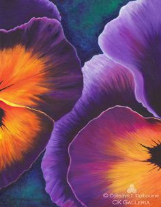 Your Inner Beauty, Pansies