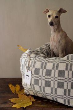 Puuvillainen vuode pienelle koiralle (noin 10 kg max). Korkeat reunat. Kuovio saattaa vaihdella. Kaikissa kuitenkin sama värit...