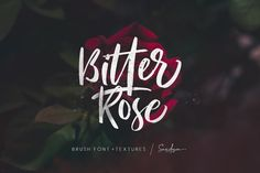 Bitter Rose - Brush Font (+TEXTURES) by Sarid Ezra on @creativemarket