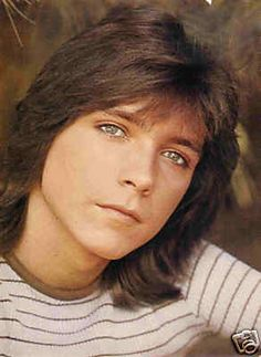 David Cassidy --- he was so cute in the 70's!