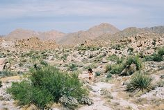 Group Show: 31 Photos of Sweeping Desert Landscapes