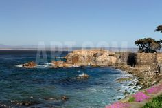 Lover's Point at Pacific Grove, California. Photographic Print by Wolterk at Art.com