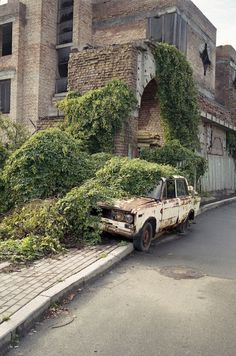 -This picture reminds me of the scene in Jumanji version) when the police c.- This picture reminds me of the scene in Jumanji version) when the police car gets dragged into the bushes by the man eating plant haha! Abandoned Buildings, Abandoned Houses, Abandoned Places, Derelict Places, Abandoned Asylums, Old Buildings, Mother Nature, Beautiful Places, Scenery