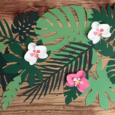 Paper decorations Aloha - Tropical leaves, mix, set contains 7 different shapes of leaves, each shape in 3 shades of green colour. Moana Party, Moana Birthday Party, Aloha Party, Luau Party, Baby Party, Flamingo Party, Paper Leaves, Paper Flowers, Party Banner