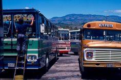 Autobuses, Paraíso