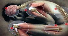 Ανεπάρκεια της βιταμίνης B12. Ποια είναι τα συμπτώματα, και πως να τα θεραπεύσετε
