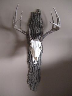 Antler tree bark Deer Skull Decor, Deer Hunting Decor, Deer Skulls, Antler Crafts, Antler Art, Euro Mounts, European Mount, Taxidermy Display, Antler Mount