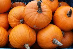 Alarmující stav cholesterolu, krevní glukózy, triglyceridů a dalších hodnot… Smoothie, Health Fitness, Pumpkin, Vegetables, Food, Anatomy, Pumpkins, Essen, Smoothies