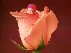 Flowers-Babies-Anne-Geddes