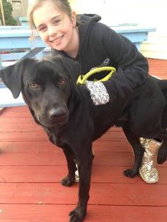 Dalton is a doll! This 2 year old black lab walks nicely on a leash, is sweet and friendly and oh so gorgeous! He weighs about 65 lbs www.ruffhouserescue.org for adoption application #ruffhouserescue #adoptdontshop #adoptdalton