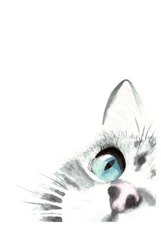 This listing is for a cat watercolor art print, a lovely way to style a room! The print is an representation of a close up of an intensely focused little cat in tones of grey and blue. A vivid reproduction of my original watercolor painting, this art print is made using archival inks