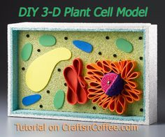 Save this! This is the best tutorial to DIY a 3-D model of a plant cell. CraftsnCoffee.com.