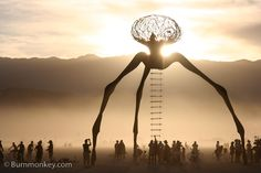 I'm in a desert-y mood; burning man