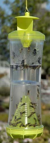 $11.49 Not sure what kind of wasps you have? This trap catches most of them but it's best to know which wasps you're targeting. The Rescue WHY (Wasp, Hornet, Yellow Jacket) non-toxic reusable trap uses no pesticides! Catches 18 species. If you had a wasp problem last year, expect the same this year. Put your traps up before you see nests. Catch the yellow jacket queens in the spring and prevent thousands of yellow jackets later in the season. Wasps not included.