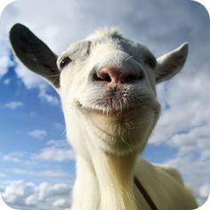 Goat Simulator 1.2.4