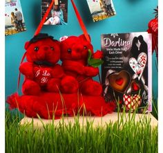 Love Greeting with Hanging Couple Heart Teddy