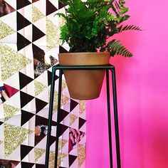 Clever inventive and proudly South African! How fun is this steel potplant stand by Meta a new decor company in Cape Town? A quick and easy detail to upgrade your home/office/life. @meta.thing #GLAMliving  via GLAMOUR SOUTH AFRICA MAGAZINE OFFICIAL INSTAGRAM - Celebrity  Fashion  Haute Couture  Advertising  Culture  Beauty  Editorial Photography  Magazine Covers  Supermodels  Runway Models